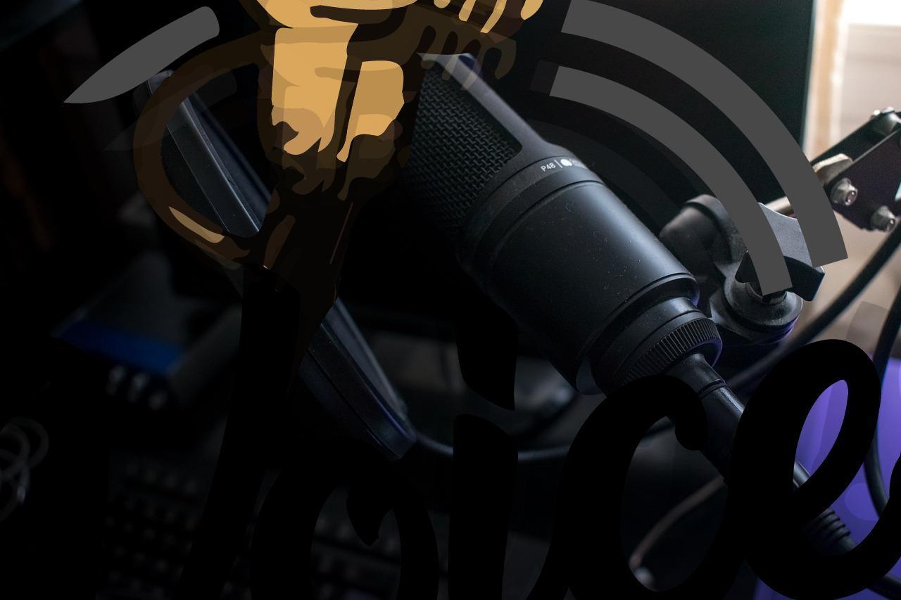 مجالات العمل في التعليق الصوتي